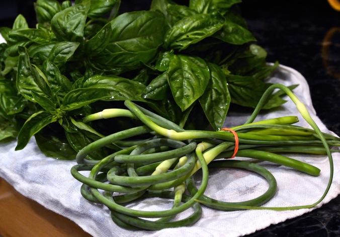 Garlic Scape Basil Pesto | Pumpkin Honey